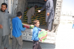 distribution-more-from-truck-at-ANAD-